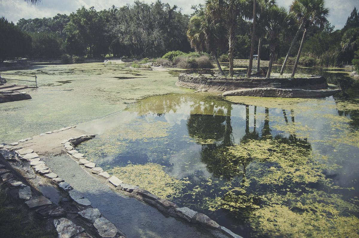 Gainesville Williston Florida Devils Den Millhopper Brittany Norris Springs Scuba Diving Resort