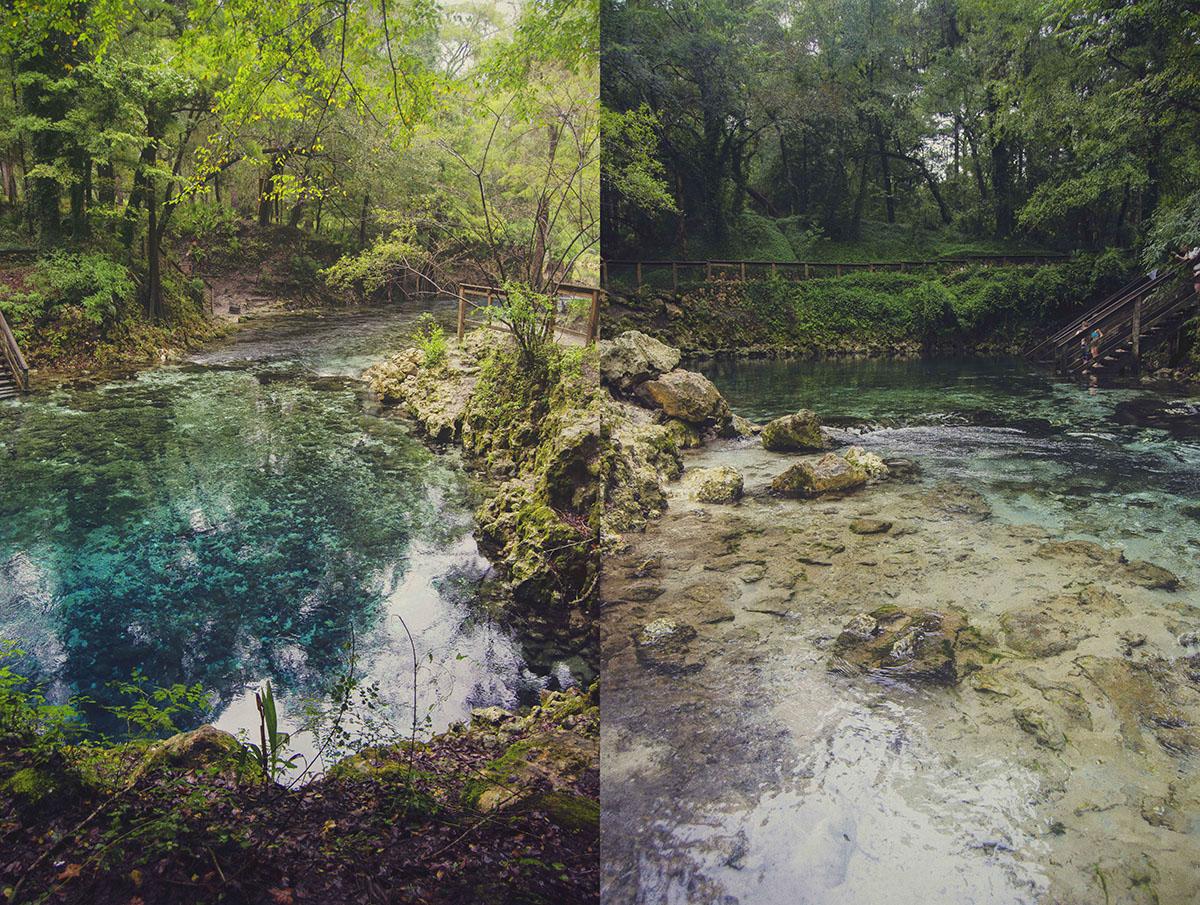 brittany norris florida live oak springs natural nature Madison Blue Spring State Park