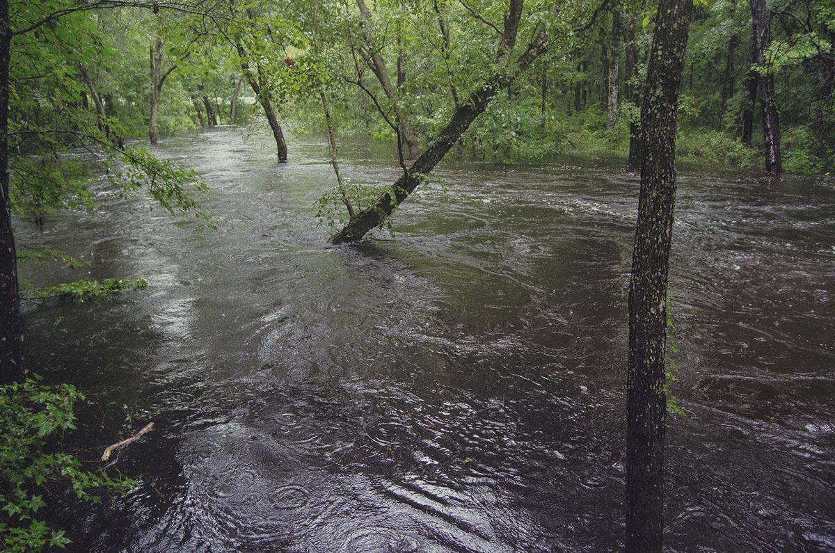 brittany norris florida live oak springs natural nature Falling Creek Falls