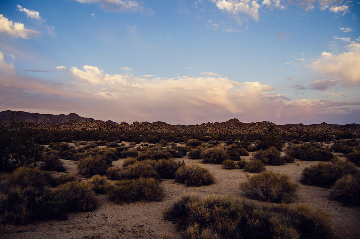 road trip america go west sisters camping driving joshua tree national park california sunset