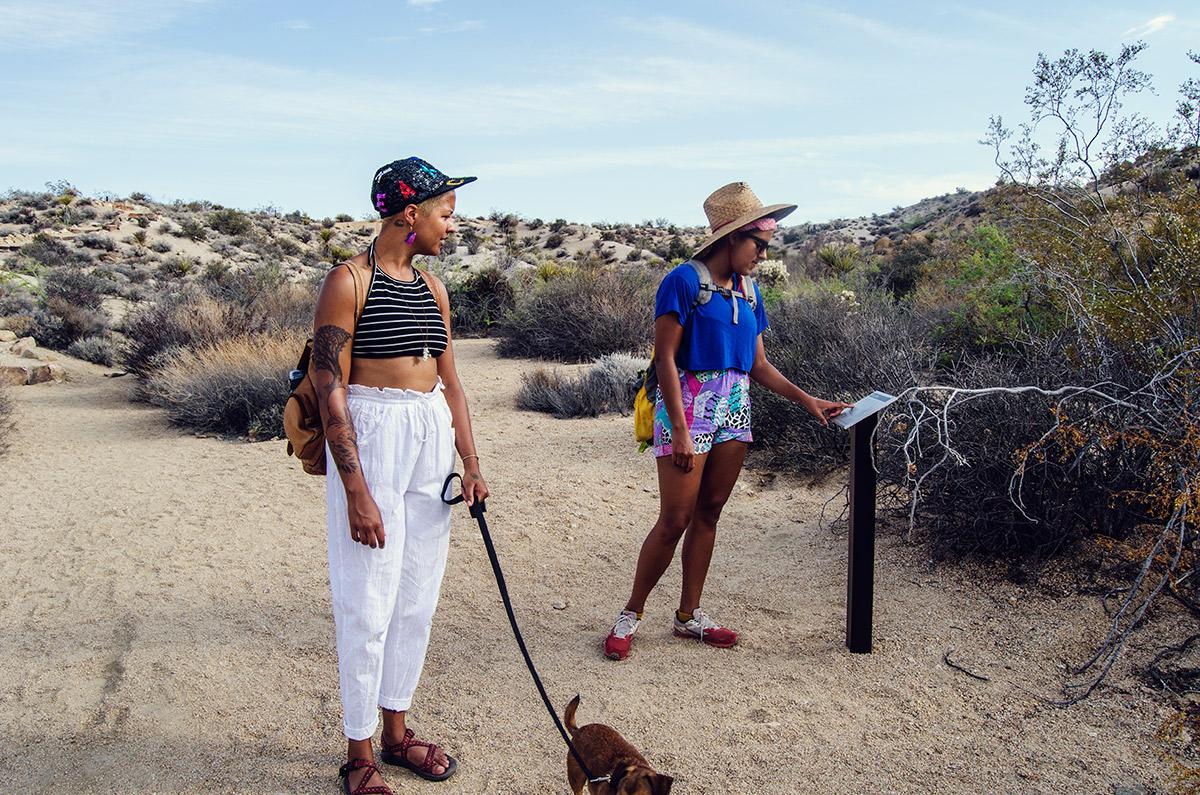 road trip america go west sisters camping driving joshua tree national park california hiking