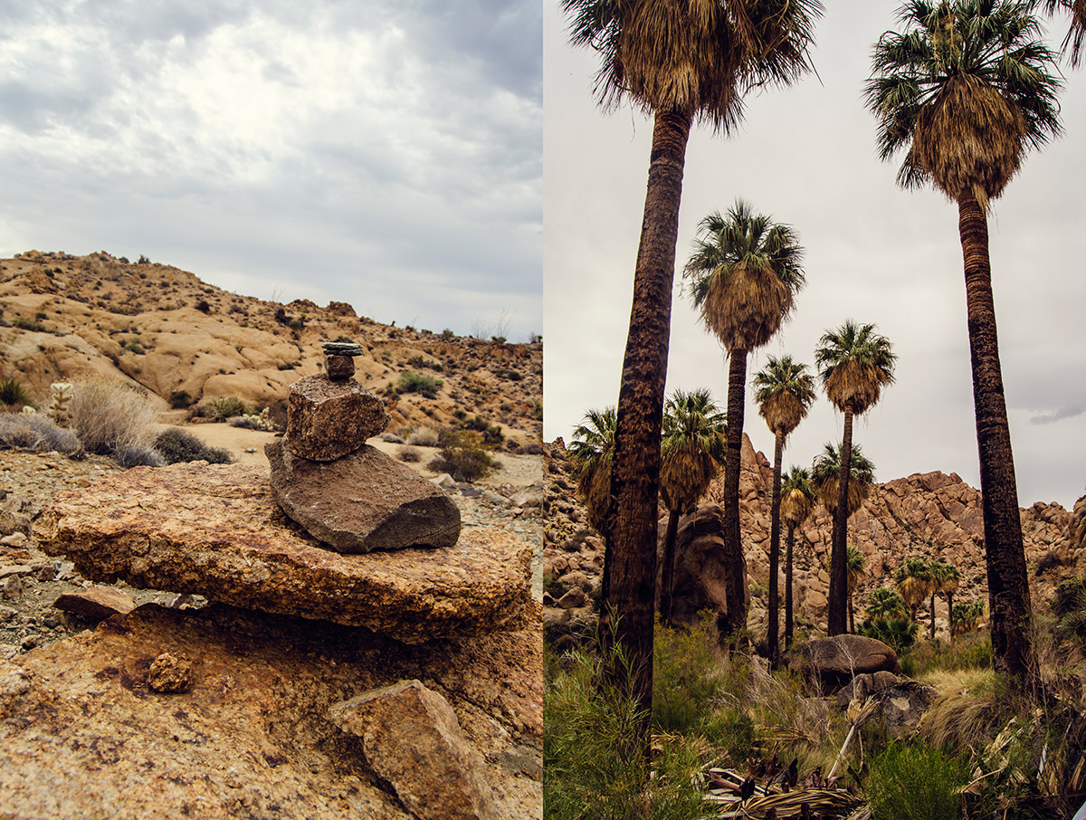 road trip america go west sisters camping driving joshua tree national park california hiking lost palms oasis
